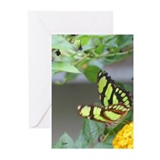 Yellowish Green Butterfly Greeting Cards (Package