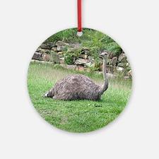 Ostrich Keepsake (Round)