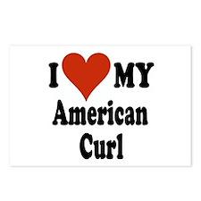 American Curl Postcards (Package of 8)