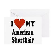 American Shorthair Greeting Cards (Pk of 10)