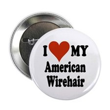 "American Wirehair 2.25"" Button"