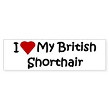 British Shorthair Bumper Bumper Sticker