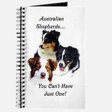 Aussie Group Journal