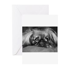 Dog - Pekingese #1 Greeting Cards (Pk of 10)