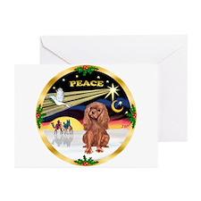 XmasDove/Cavalier #7 Greeting Cards (Pk of 20)