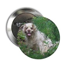 """Clumber Spaniel 2.25"""" Button (10 pack)"""