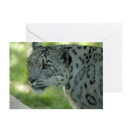 Snow Leopard M004 Greeting Cards (Pk of 10)