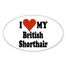 British Shorthair Oval Decal