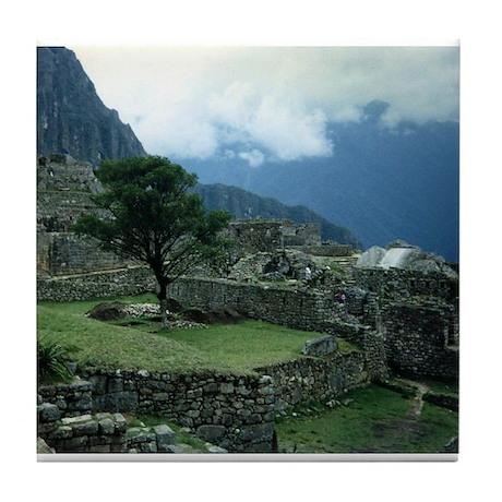 Machu Picchu Tree Tile Coaster