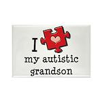 I Love My Autistic Grandson Rectangle Magnet (100