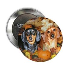 "Autumn Dachshunds 2.25"" Button"