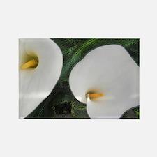 Calla Lilies II Rectangle Magnet