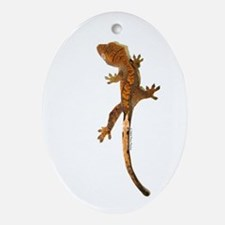 """Crested Gecko Climbing"" Oval Ornament"
