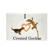 I Love Crested Geckos Rectangle Magnet