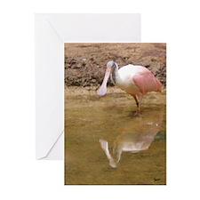 Roseate Spoonbill Greeting Cards (Pk of 10)