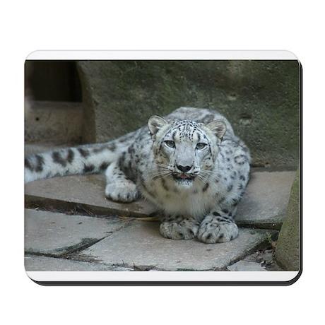 Snow Leopard M006 Mousepad