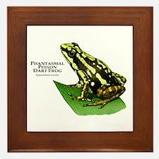 Phantasmal Poison Dart Frog Framed Tile