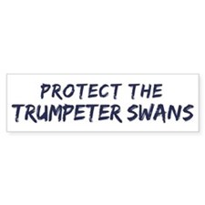 Protect the Trumpeter Swans Bumper Bumper Sticker