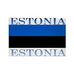 Estonia Estonian Flag Rectangle Magnet (10 pack)