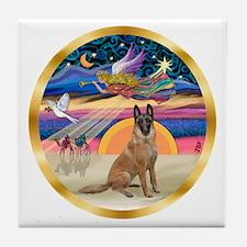 XmasStar/Malanois Tile Coaster