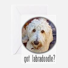 got labradoodle? Greeting Card