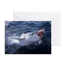 Attacking Shark Greeting Card