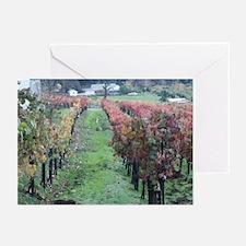 Beautiful Vineyard Greeting Cards (Pk of 10)