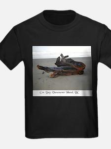 Driftwood 3 T