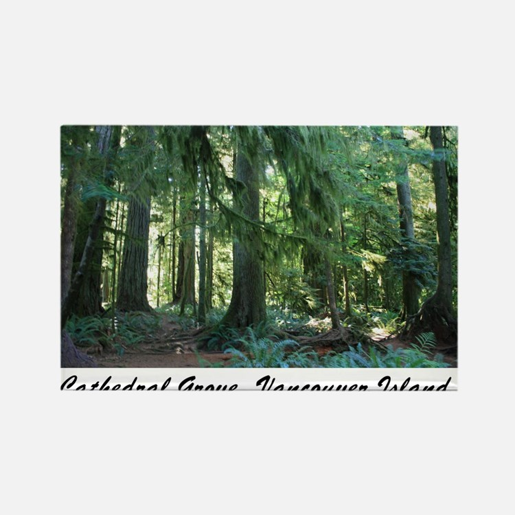 Cathedral Grove 30 Rectangle Magnet