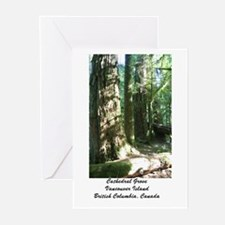 Cathedral Grove 28 Greeting Cards (Pk of 20)