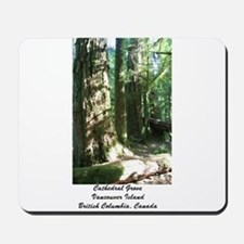 Cathedral Grove 28 Mousepad