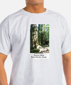 Cathedral Grove 28 T-Shirt