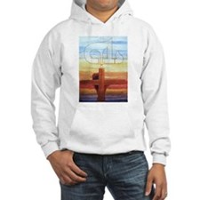 Name Above All Names Hoodie