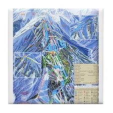 Cute The summit Tile Coaster