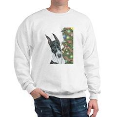 Holiday CM Sweatshirt