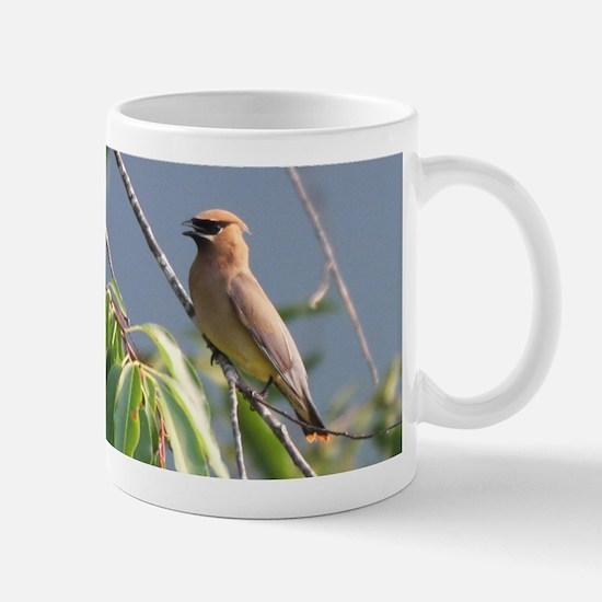 Cedar Waxwing Mug