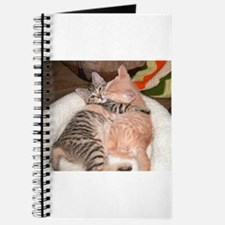 kitty Hug Journal