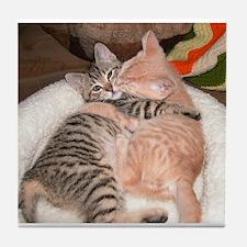kitty Hug Tile Coaster