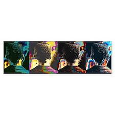 FRANK - bumpersticker pop art
