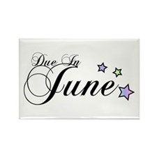 3 Rainbow Stars Due June Rectangle Magnet