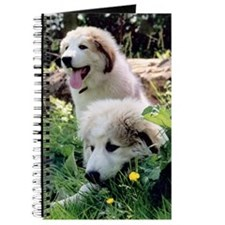 Great Pyrenees Journal - Pyr Puppies