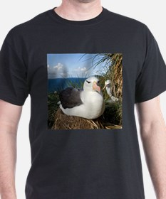 Cute Albatross T-Shirt