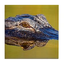 Unique American alligator Tile Coaster
