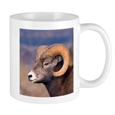 4-Big Horn Sheep 102007 - 002 Mugs