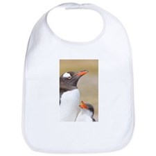 Cool Falklands penguin Bib