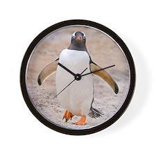 Falklands penguin Wall Clock