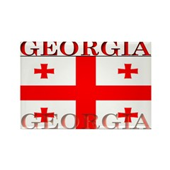 Georgia Georgian Flag Rectangle Magnet (100 pack)