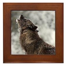 Cool Montana Framed Tile