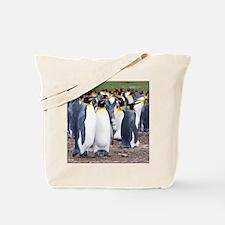 Unique Falklands penguin Tote Bag