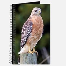 Cute Red hawk Journal